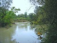 fiume Ronco
