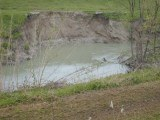fiume Lamone erosione